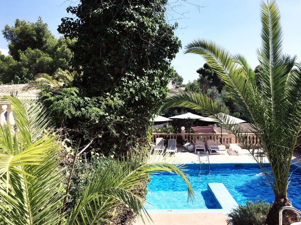 mallorca-hotel-rd-mar-de-portals-palm-tree